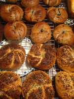 Everything_and_blueberry_bagels